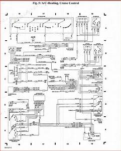Panduit Cat6 Jack Wiring Diagram Gallery