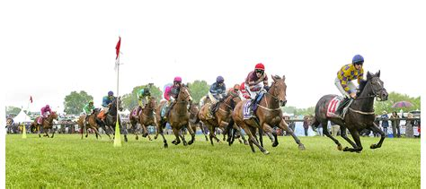 The Willowdale Steeplechase