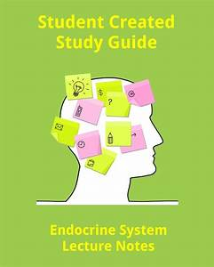 Student Created Endocrine System Lecture Notes