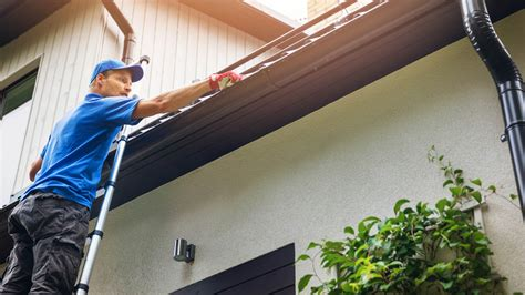 roof cleaning portland gutter cleaning landscape