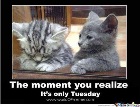Happy Tuesday Meme - tuesday by trolalalalala meme center