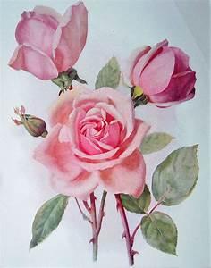 Old floral prints