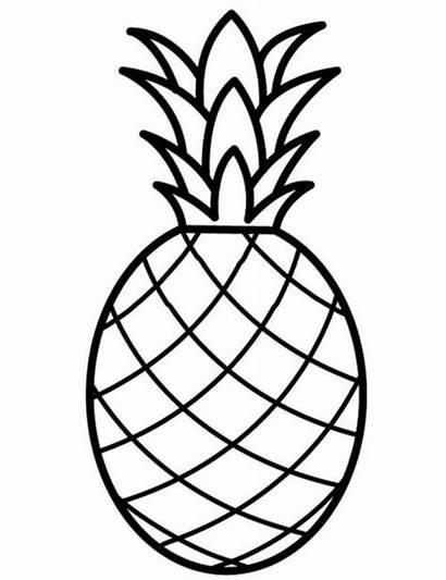 Buah Nanas Gambar Ananas Putih Hitam Mewarnai