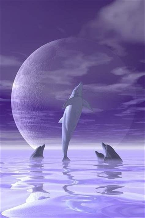 images  dolphin bedroom ideas  pinterest