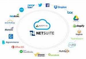Chart Of Accounts In Sap Netsuite Connectors Netsuite Api Integration