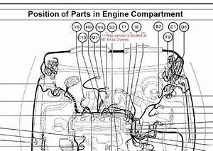 2002 Toyota Ta Engine Diagram 27784 Centrodeperegrinacion Es