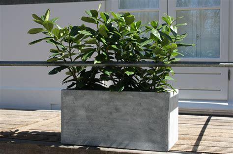 pflanzkübel fiberglas pflanzk 252 bel pflanztrog fiberglas quot maxi quot beton design grau blumenk 252 bel pflanzk 252 bel vivanno