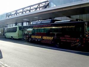 Bus Erfurt Berlin : erfurt busbahnhof im m rz 2011 nahverkehr deutschland ~ A.2002-acura-tl-radio.info Haus und Dekorationen