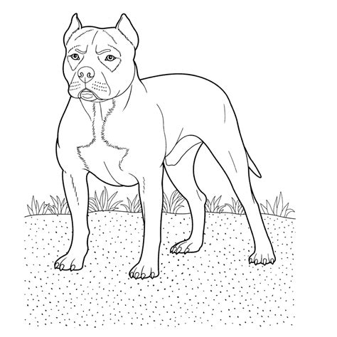 Honden Prinsesen Kleurplaat by Leuk Voor Pitbull