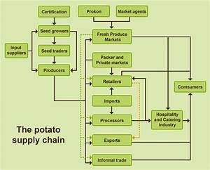 Potato value chain | Root and Tuber Crops | Pinterest