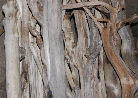 les bois flott 233 s de bernard