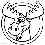 Moose Coloring Printable Cartoon Clipart Head Drawing Clip Cliparts Cool2bkids Library sketch template