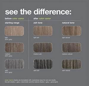 Redken Professional Color Camo Shade Charts Blending