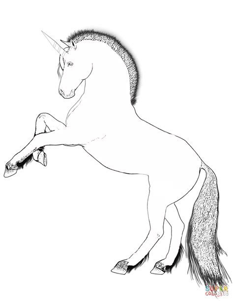 rearing unicorn coloring page  printable coloring pages