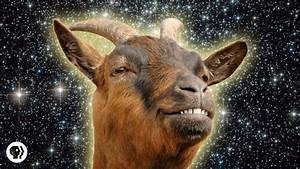 The Science Of Goats