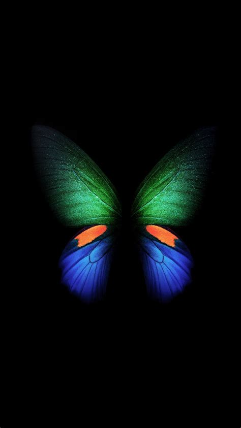 samsung galaxy fold butterfly stock  wallpapers hd