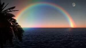 1033, Rainbow, Palm, Moon, Ocean, Surf
