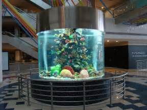 china acrylic fish tank aquarium manufacturer photos pictures made in china