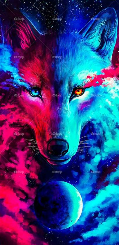Cool Wolf Phone Wallpapers Backgrounds Cat Itl