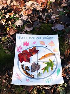 Kids Fall Activities  Leaf Color Wheel