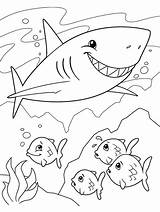 Shark Coloring Crayola Sharks Colouring Sheet Fish sketch template