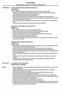 Business Development Specialist Resume Samples