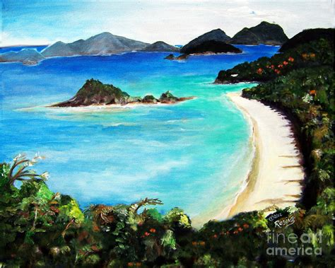 Trunk Bay St John Virgin Islands Painting By Rosine Smith
