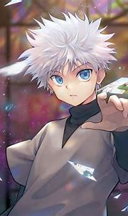 Pin by Kawaiipanda on Killugon/Gonkillu | Hunter anime ...