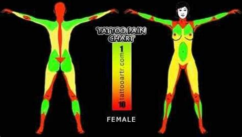 female tattoo pain chart tattoo female tattoo pain