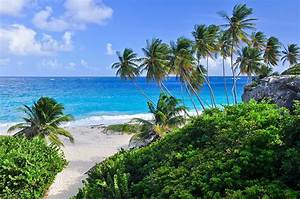 Bilder Von Palmen : karibik landschaftsfotograf david k ster ~ Frokenaadalensverden.com Haus und Dekorationen