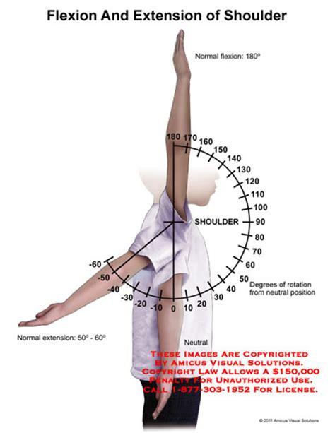 Shoulder Flexion and Extension Range
