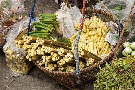 cuisiner les pousses de bambou préparer les pousses de bambou le manger