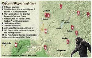 How to have a Bigfoot experience in the Inland Northwest ...