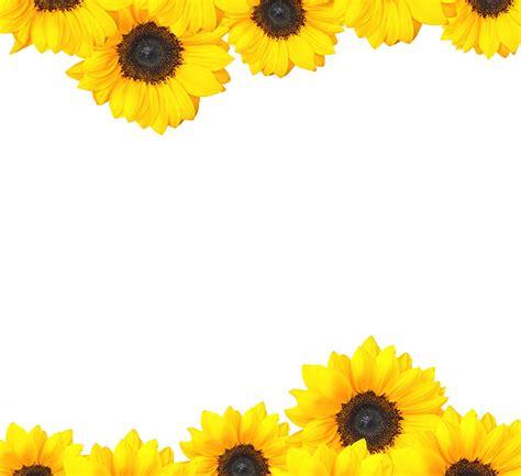bring   sunshine  sunflower wedding invitations