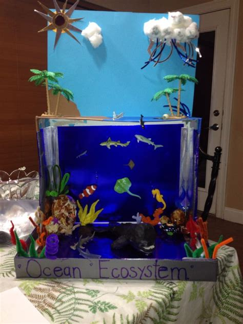 ocean ecosystem school project ideas ocean ecosystem