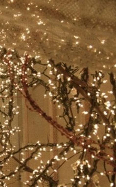 lit grapevine garland  foot  white lights perfect