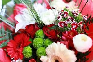 Bilder Von Blumenstrauß : blumenstrau bilder bilddatenbank stockfotos ~ Buech-reservation.com Haus und Dekorationen