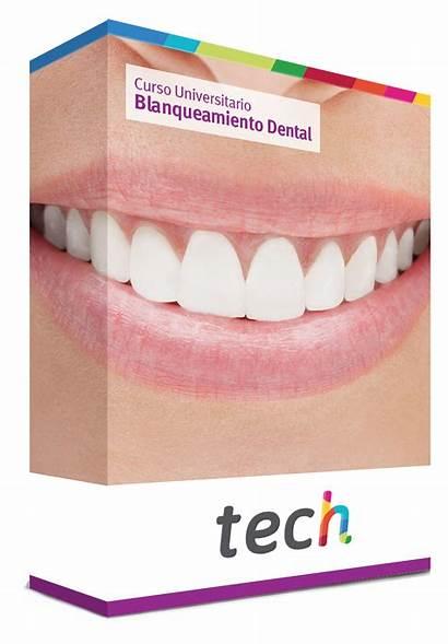 Dental Blanqueamiento Universitaria Caja Techtitute