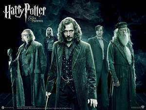 Harry Potter and the Order of the Phoenix - Movies Maniac
