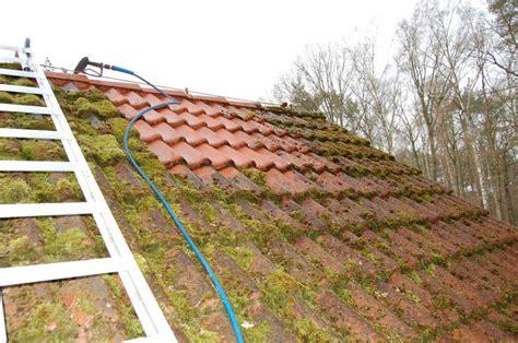 Algen Und Moos Entfernen Auf Terrasse Und Wegen by Moos Entfernen Dach Moos Entfernen Dachreinigung Und