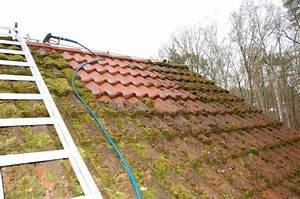 Moos Auf Dem Dach : vermoostes dach reinigen dachreinigung dach reinigen und s ubern bei fehlern drohen teure sch ~ Watch28wear.com Haus und Dekorationen