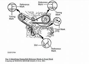 Service Manual  Diagram To Install Serpentine Belt 1999 Lexus Rx