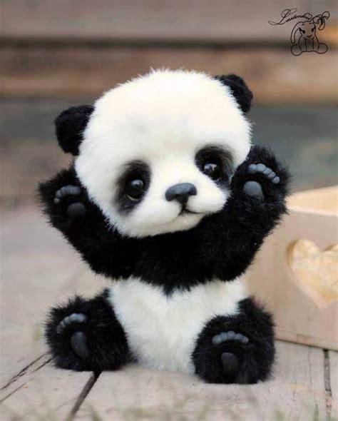 hugo by lastenka black white a combination of both baby animals panda baby