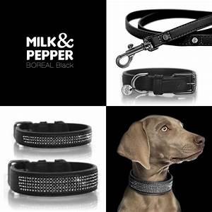 Milk And Pepper : collier chien luxe collier cuir boreal petit chien milk and pepper ~ Orissabook.com Haus und Dekorationen