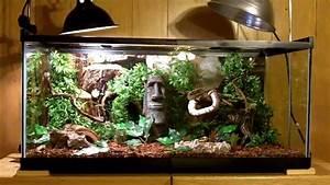 snake cage set up | maxresdefault1531.jpg | Pets ...