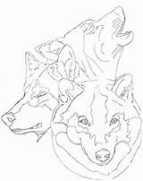 Drawings Wolf Traceable Coloring Dianalee Sketch Credit Larger sketch template