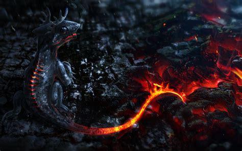 dragon red  wallpaper   wallpaper