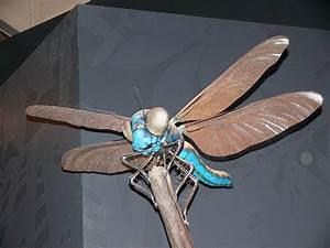 giant prehistoric insects (Bogleech)