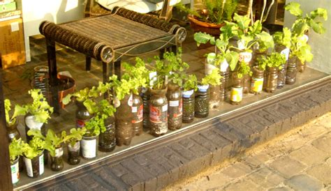6 Tips To Start Balcony Garden Ideas For Vegetables