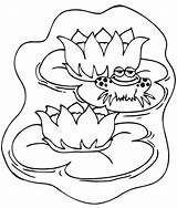 Coloring Pond Frog Animals Template Lily Pad Popular Smile Colorluna Gemerkt Coloringhome sketch template